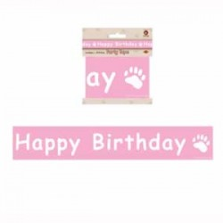 Boyd's Bear 1st Birthday Girl Party Tape