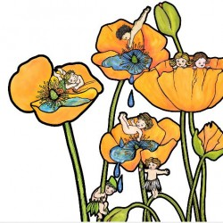 Beetle Bottoms Poppy Pools Wall Decal