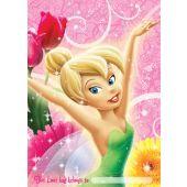 Disney Tinkerbell Loot Bags